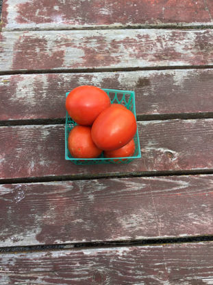 Imagen de Roma Tomato: For Pickup at Farm Friday, 3-6 p.m.