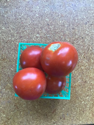 Imagen de Slicer Tomatoes: For Pickup at Farm Friday, 3-6 p.m.