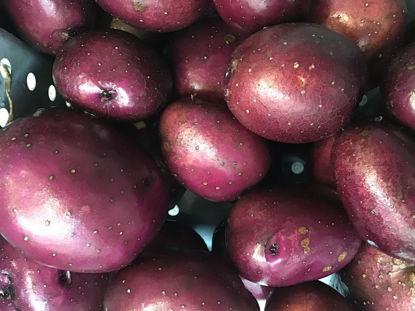 Imagen de Huckleberry Gold Potato: For Pickup at Farm Friday, 3-6 p.m.